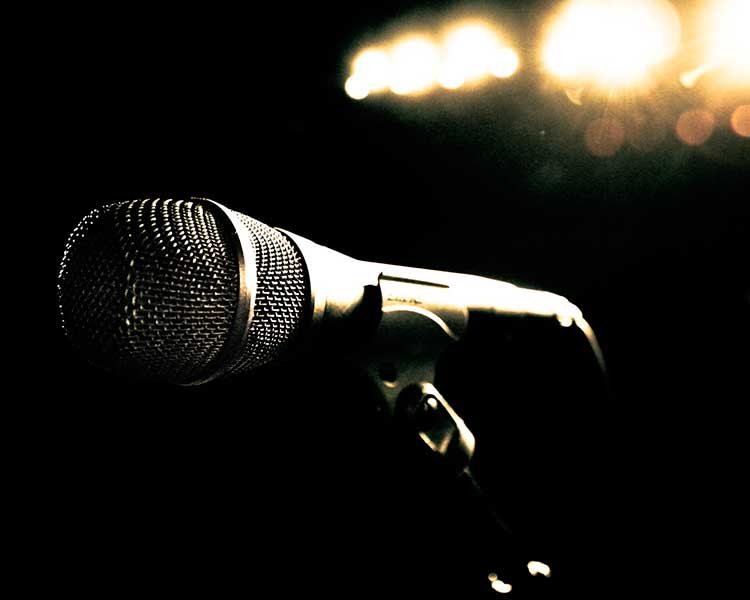 30 лучших микрофонов для записи вокала