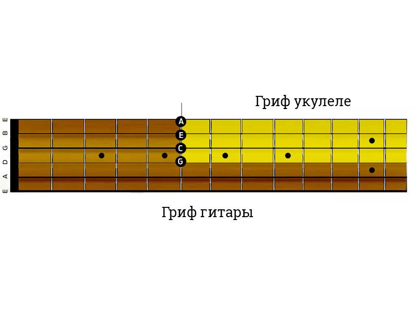 kak-igrat-na-ukulele-nastroyka