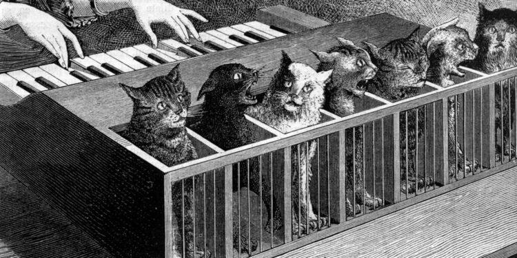 Необычные музыкальные инструменты: кошачий клавесин (кошачье фортепиано)