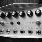 Необычные музыкальные инструменты: терменвокс из чучела совы