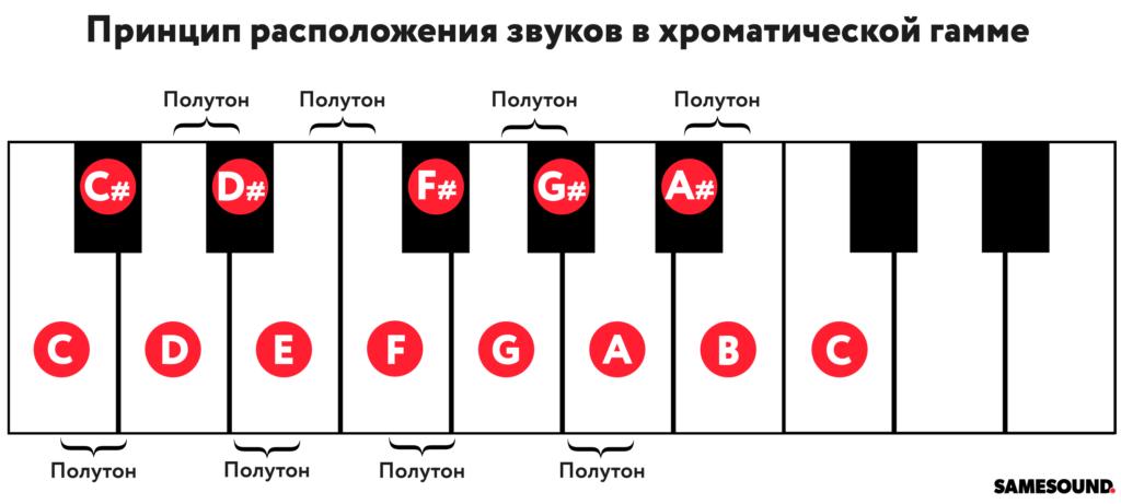 Хроматическая гамма структура гаммы для фортепиано