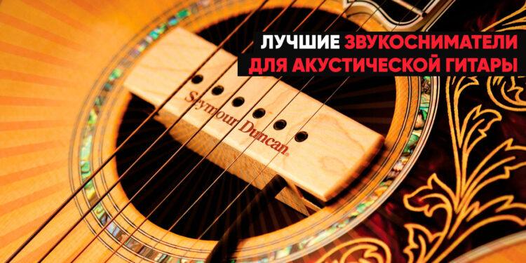 Лучшие звукосниматели для акустической гитары