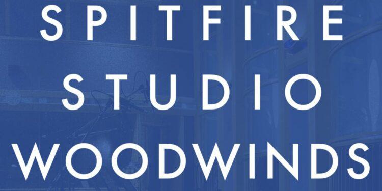 VST-духовые Spitfire Studio Woodwinds