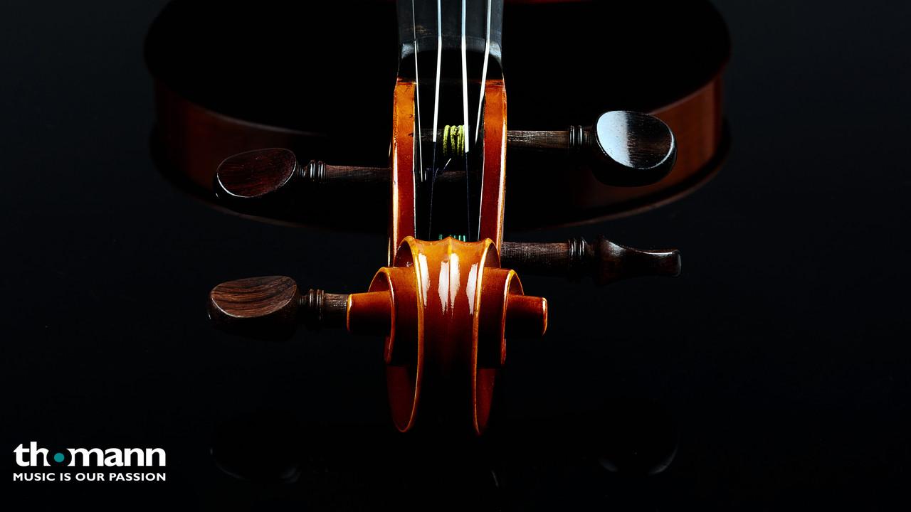 Обои для рабочего стола на тему музыки от Thomann